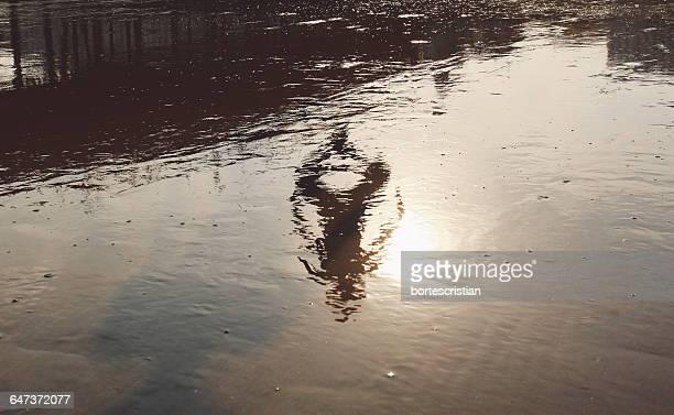 reflection of person on lake - bortes cristian stock-fotos und bilder