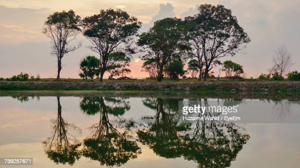 Reflection Of Silhouette Trees In Lake Against Sky