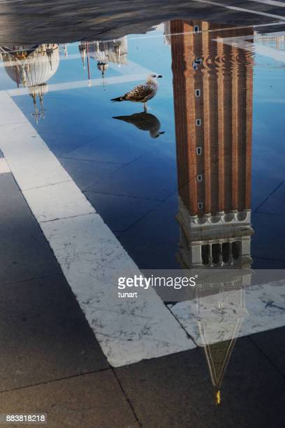 reflection of sr. mark bell tower on water of the town square - basilica di san marco foto e immagini stock