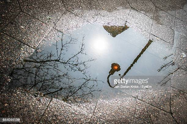 Reflection Of Street Light In Puddle On Road