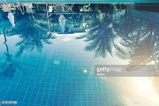 reflection of sun and palm trees in blue swimming pool