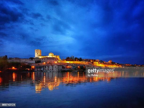 Reflection of the skyline of Zamora (Castilla y León) at night