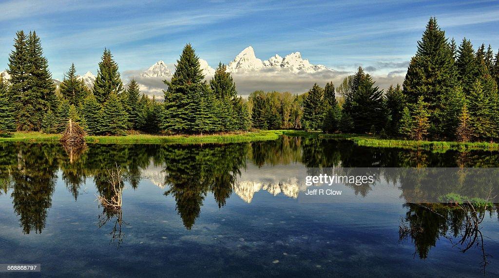 Reflection of the Tetons : Stock Photo