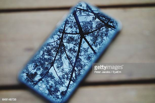 Reflection Of Tree Branches On Mobile Phone