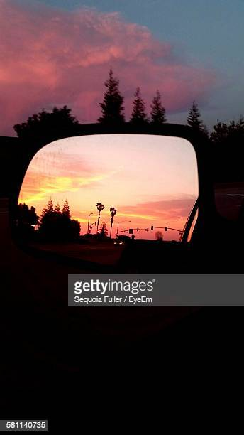 Reflection Of Trees And Road In Side View Mirror Of Car