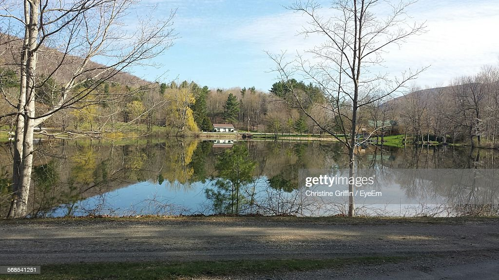 Reflection Of Trees And Sky On Pond : Stock Photo