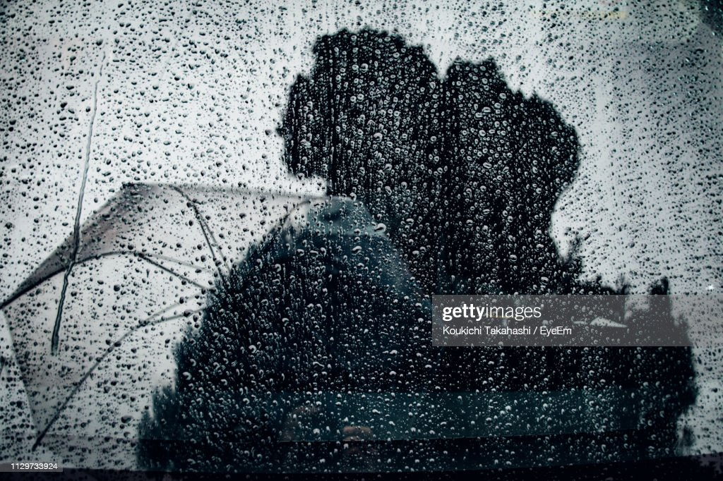 Reflection Of Trees And Umbrella On Wet Window : Stock Photo