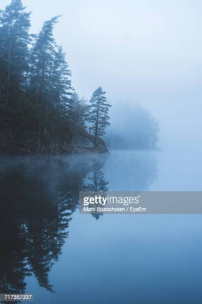 Reflection Of Trees In Calm Lake In Foggy Weather