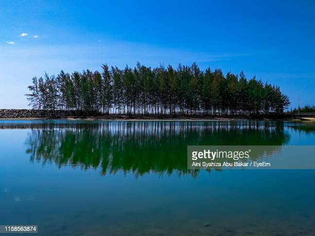 reflection of trees in lake against blue sky - terengganu stock pictures, royalty-free photos & images
