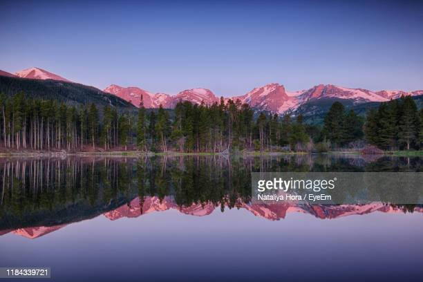 reflection of trees in lake against clear sky at sunset - ver a hora stockfoto's en -beelden