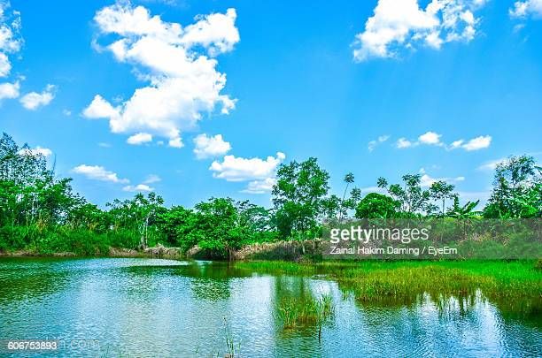 Reflection Of Trees In Lake Against Cloudy Blue Sky