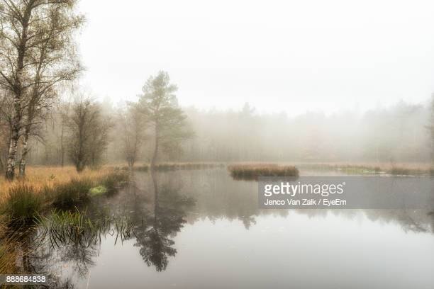 Reflection Of Trees In Lake Against Sky During Foggy Weather
