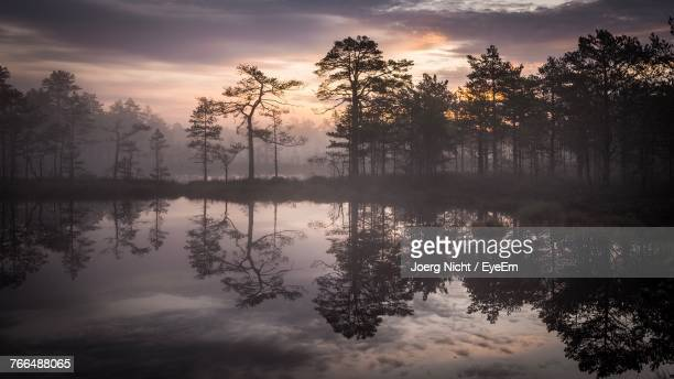 Reflection Of Trees In Lake Against Sky During Sunset