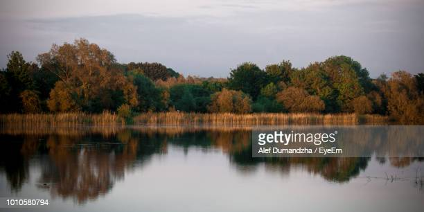 Reflection Of Trees In Lake Against Sky
