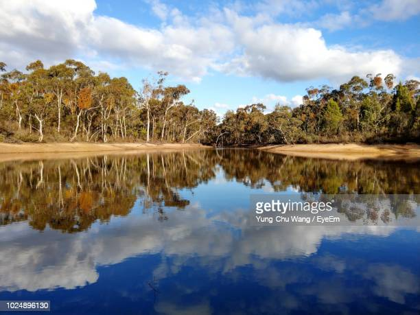 reflection of trees in lake against sky - lago reflection foto e immagini stock