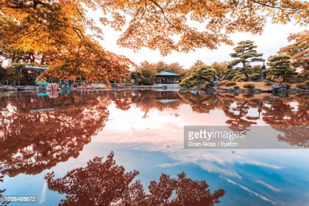 reflection of trees in lake against sky - nagoya stock pictures, royalty-free photos & images