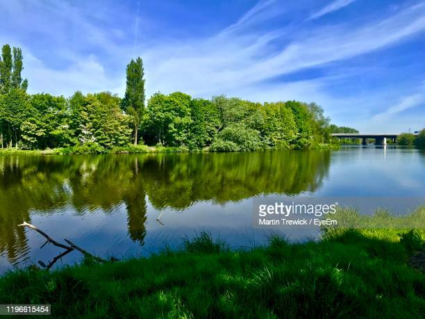 reflection of trees in lake against sky - stockton on tees stock pictures, royalty-free photos & images