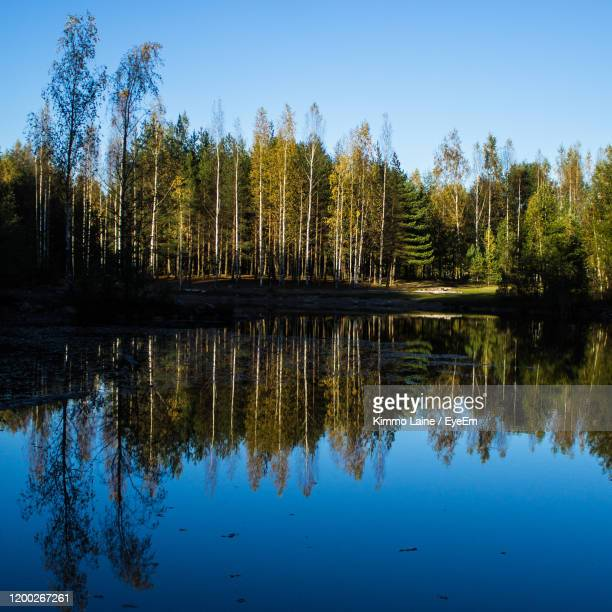 reflection of trees in lake against sky - vanda stock pictures, royalty-free photos & images