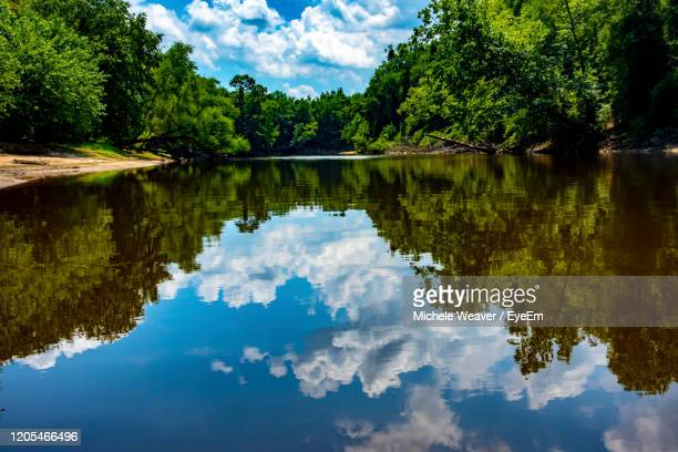 reflection of trees in lake against sky - michele weaver stock pictures, royalty-free photos & images
