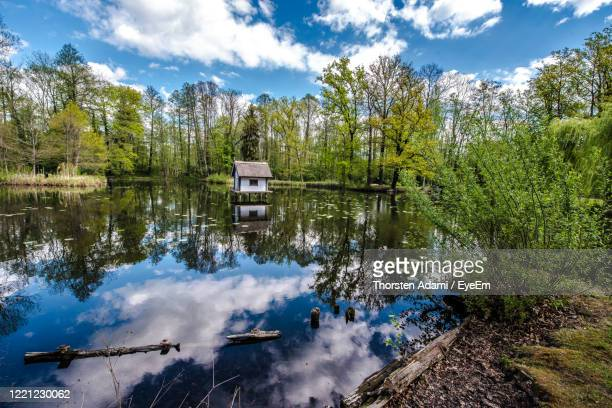reflection of trees in lake against sky - spreewald stock pictures, royalty-free photos & images