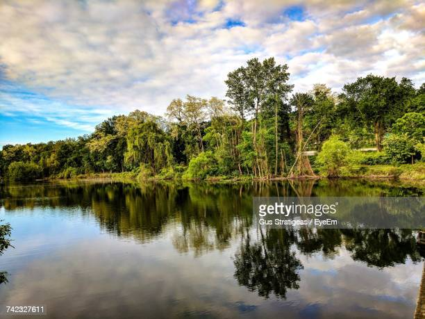 reflection of trees in lake against sky - westchester county stock photos and pictures