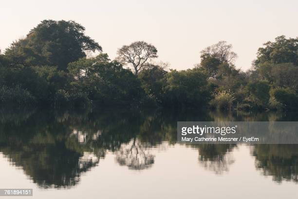 reflection of trees in lake against sky - mary lake stock photos and pictures