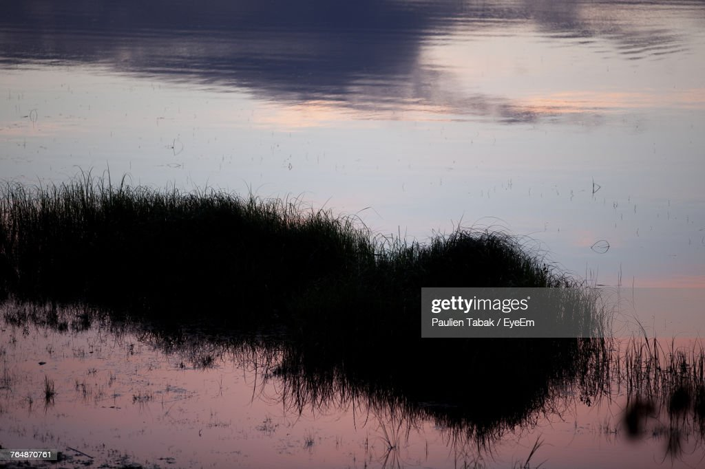 Reflection Of Trees In Lake Against Sky : Stockfoto