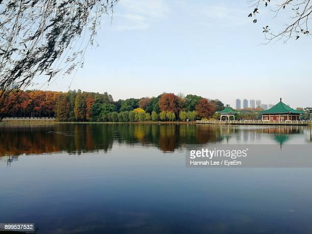 reflection of trees in lake against sky - wuhan stock photos and pictures
