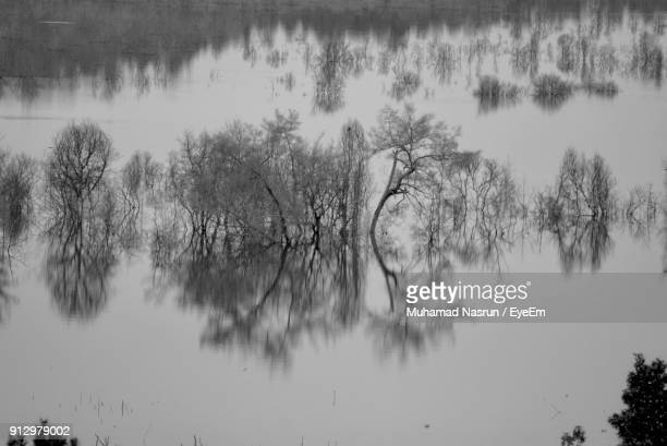 reflection of trees in lake against sky - muhamad nasrun stock pictures, royalty-free photos & images