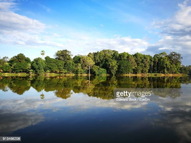 reflection of trees in lake against sky - reflection lake stock photos and pictures