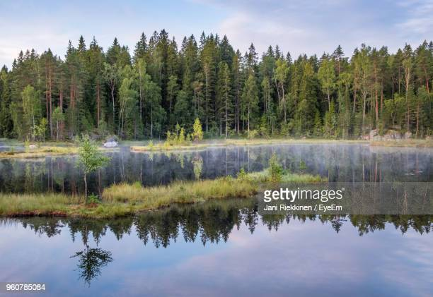 reflection of trees in lake against sky - espoo stock pictures, royalty-free photos & images