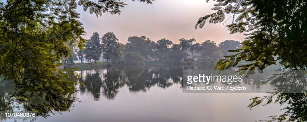 reflection of trees in lake - savar stock pictures, royalty-free photos & images