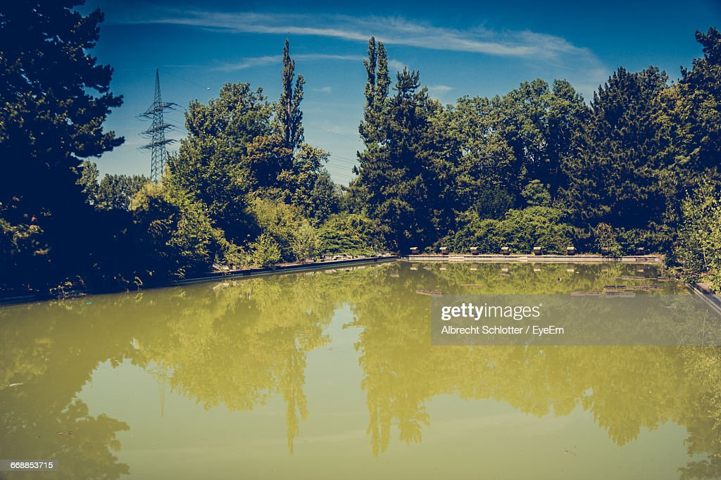 Reflection Of Trees In Lake : Stock-Foto