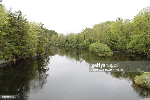 reflection of trees in lake - laura woods stock pictures, royalty-free photos & images