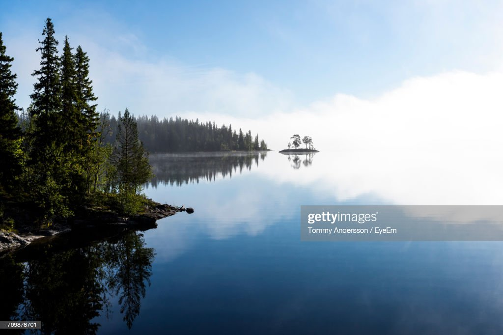 Reflection Of Trees In Lake : Stock Photo