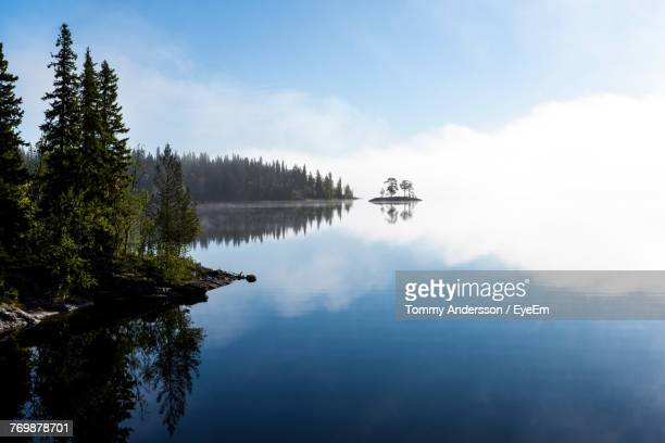 reflection of trees in lake - sweden stock pictures, royalty-free photos & images