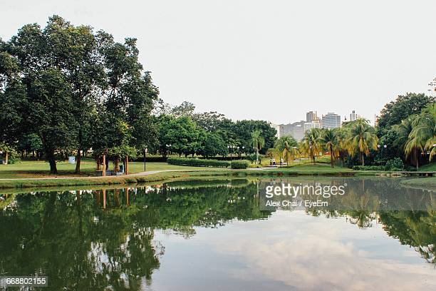 Reflection Of Trees In Park In Pond With City In The Background