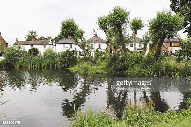Reflection Of Trees In Pond With Houses In The Background
