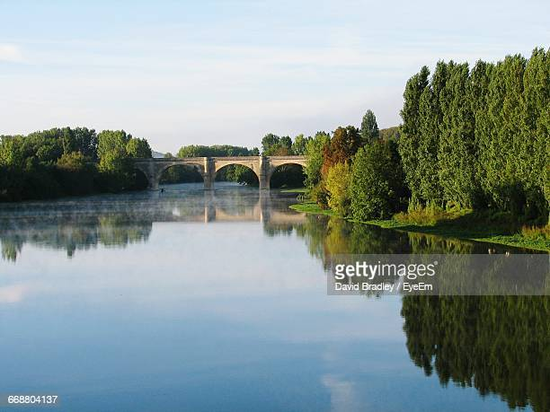 reflection of trees in river - chauvigny stock pictures, royalty-free photos & images