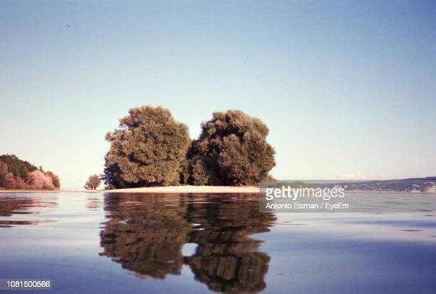 Reflection Of Trees In Sea Against Clear Sky