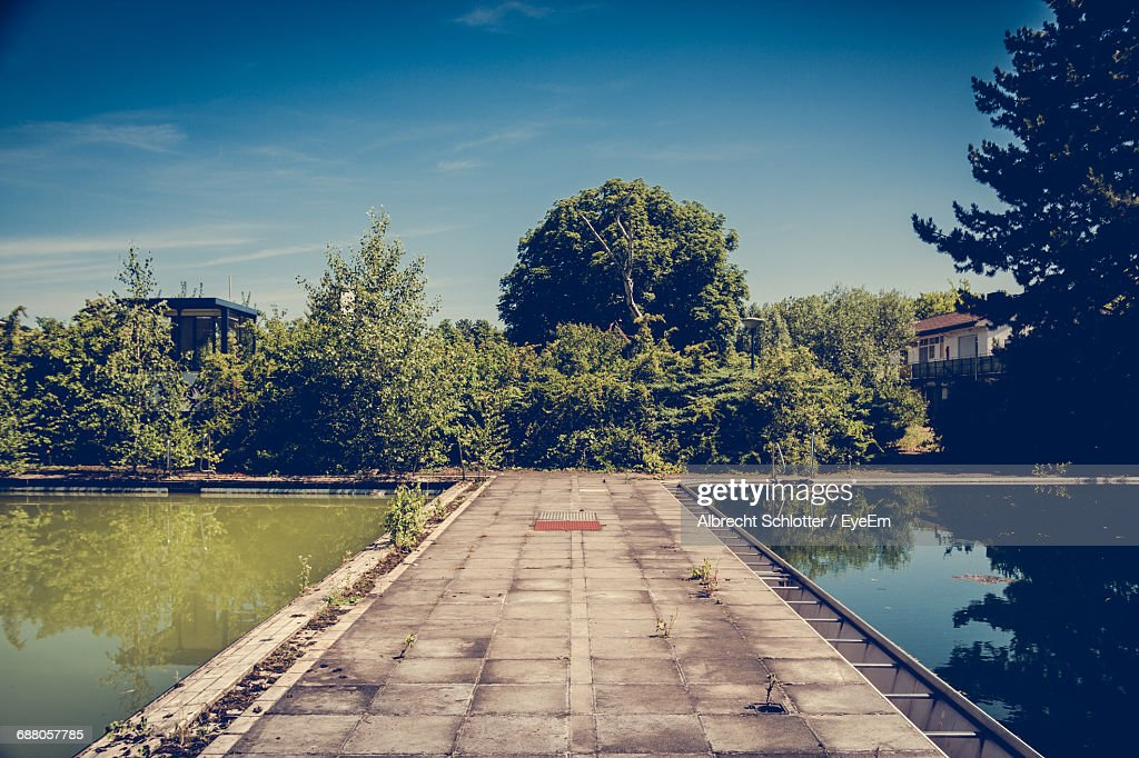 Reflection Of Trees In Unused, Decayed Pool : Stock-Foto