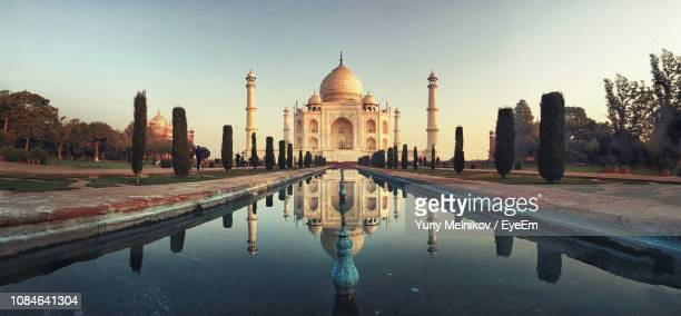 reflection of trees in water against clear sky - taj mahal stock pictures, royalty-free photos & images