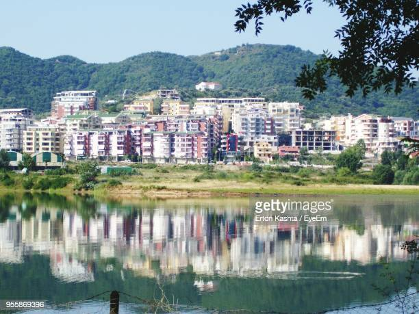 reflection of trees in water against clear sky - tirana - fotografias e filmes do acervo