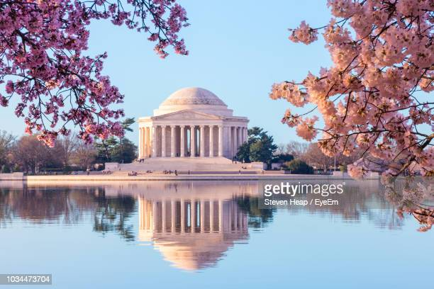 reflection of trees in water - washington dc stock pictures, royalty-free photos & images
