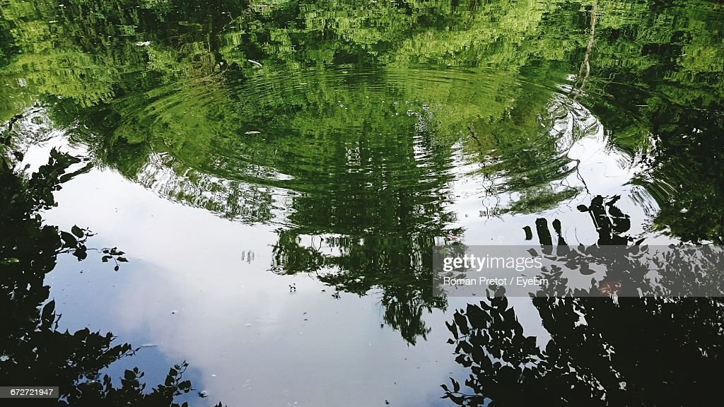 Reflection Of Trees In Water : Stock-Foto