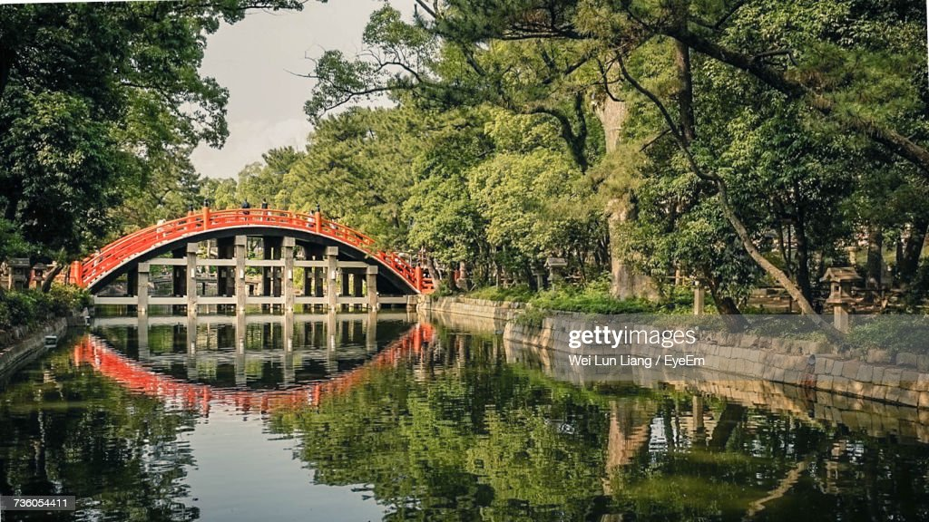 Reflection Of Trees On Bridge Over Water : Stock-Foto