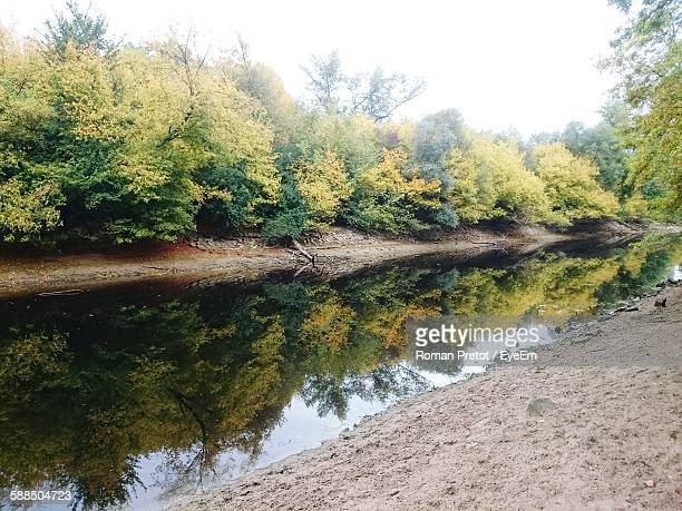 Reflection Of Trees On Calm River In Forest Against Clear Sky