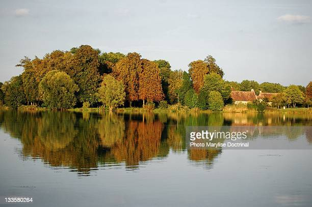 reflection of trees - bourges imagens e fotografias de stock