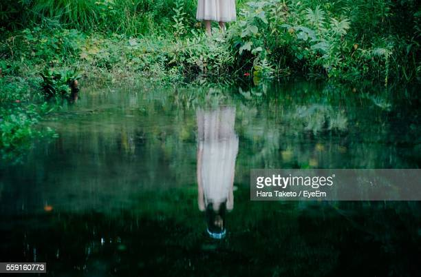 reflection of woman in lake - mujeres fotos stock pictures, royalty-free photos & images