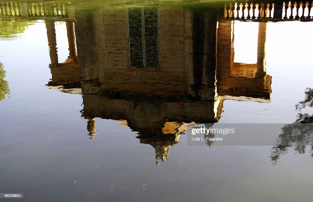 Reflection on a pond : Stock-Foto